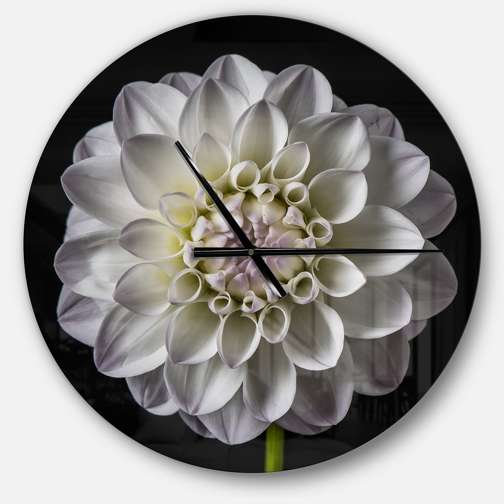 Shop designart isolated dahlia flower in black oversized floral shop designart isolated dahlia flower in black oversized floral metal clock free shipping today overstock 23534802 izmirmasajfo