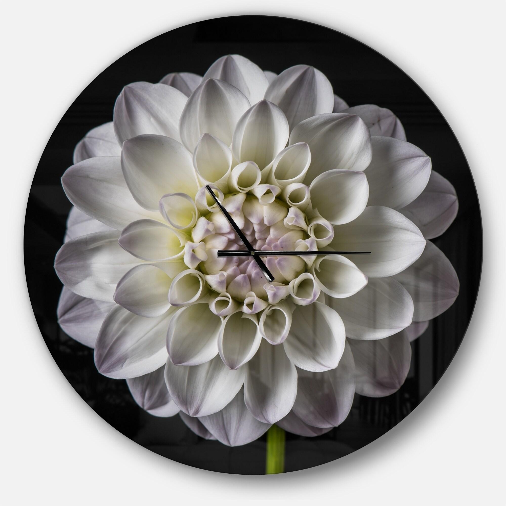 Shop Designart Isolated Dahlia Flower In Black Oversized Floral