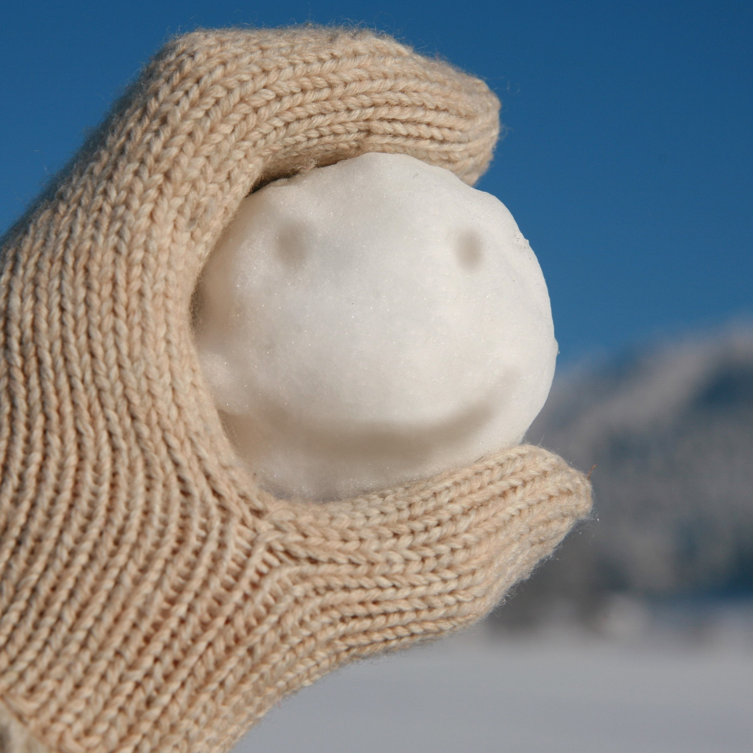 Image result for snowball with handle