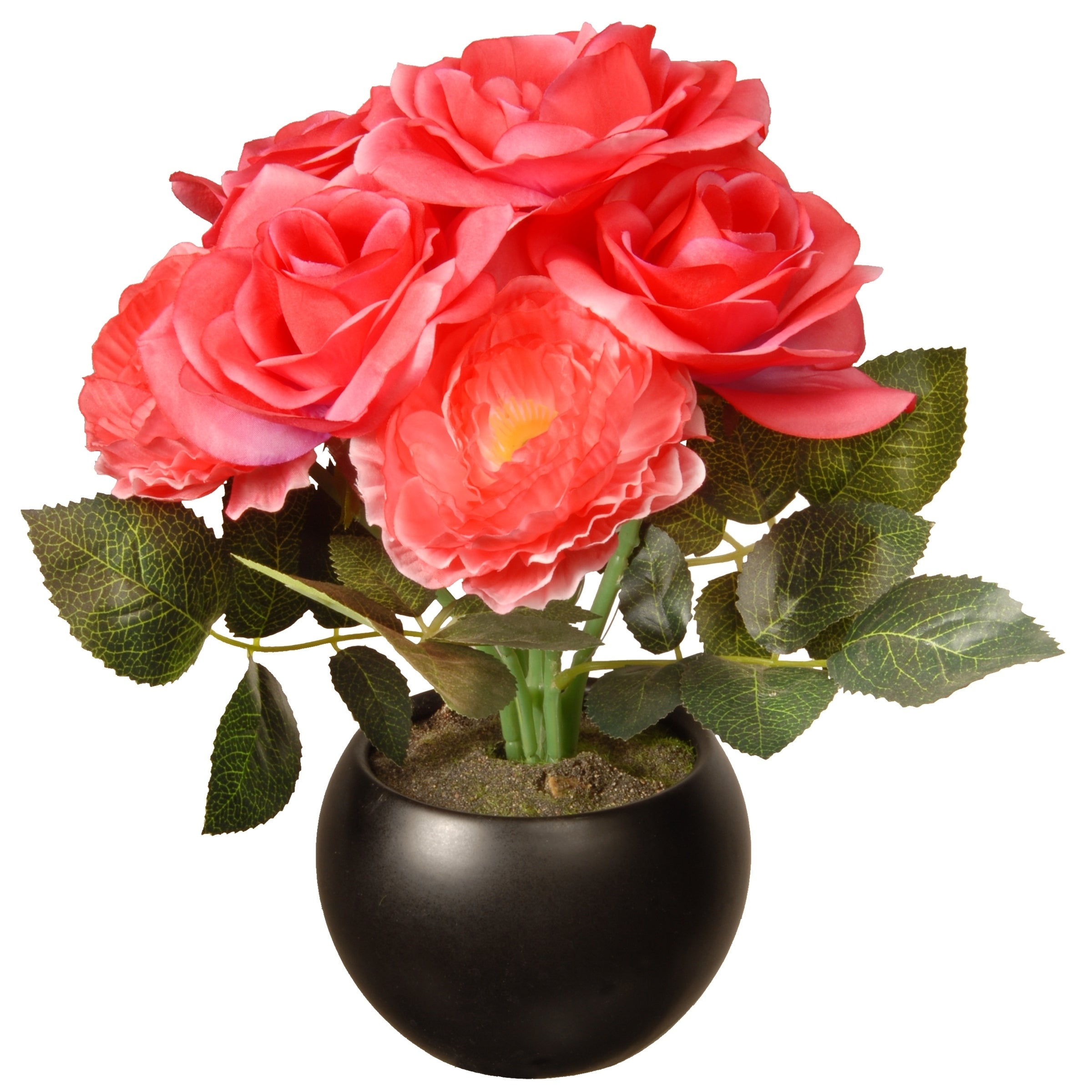 Shop Pink 9 Inch Rose Potted Flowers Free Shipping On Orders Over
