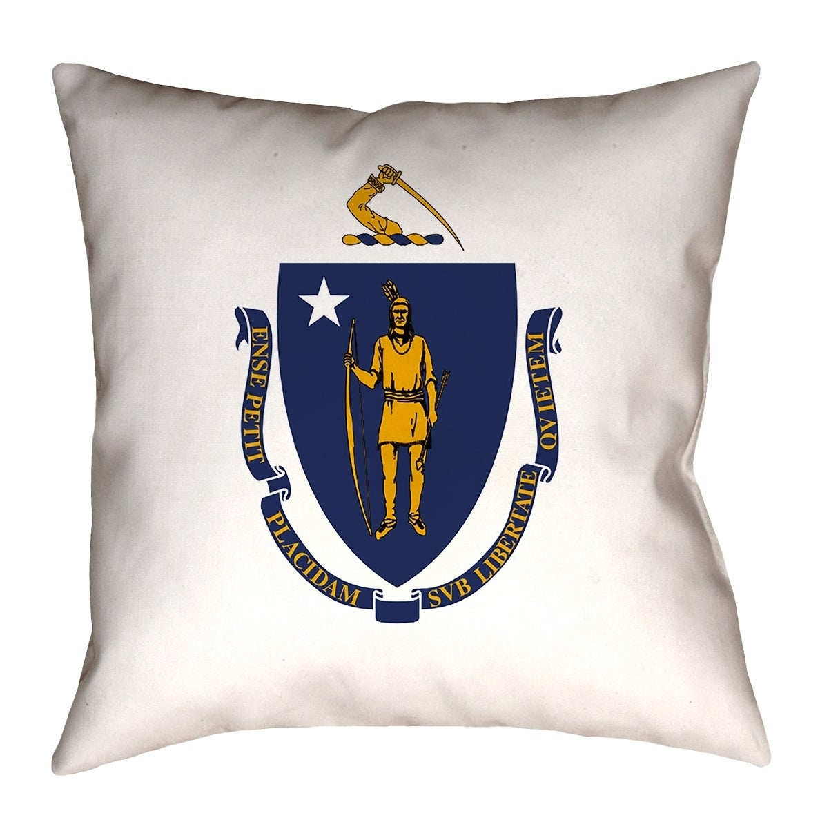 Shop Katelyn Smith Massachusetts Flag Indoor Outdoor Pillow