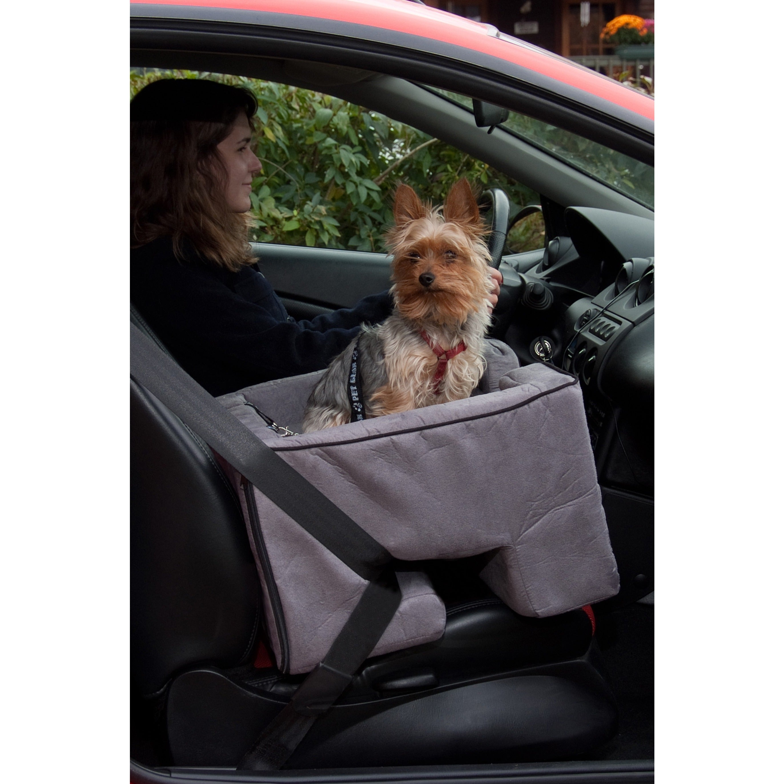 Shop Pet Gear Medium Car Booster Seat