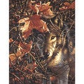 Dimensions Autumn Wolf Paint By Number Kit
