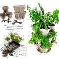 Culinary Herb Garden Starter Kit/ Mini Garden Stacker Self-Watering Planter