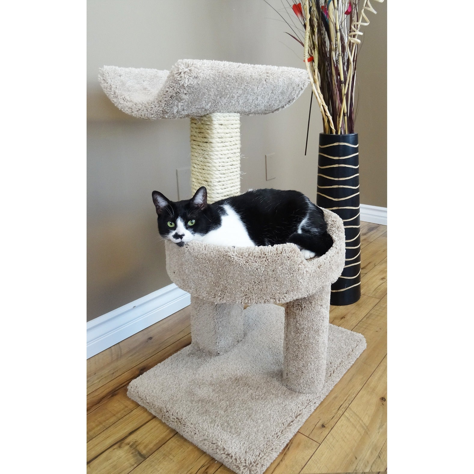 new cat condos window cat perch  free shipping today  overstock  - new cat condos window cat perch  free shipping today  overstockcom