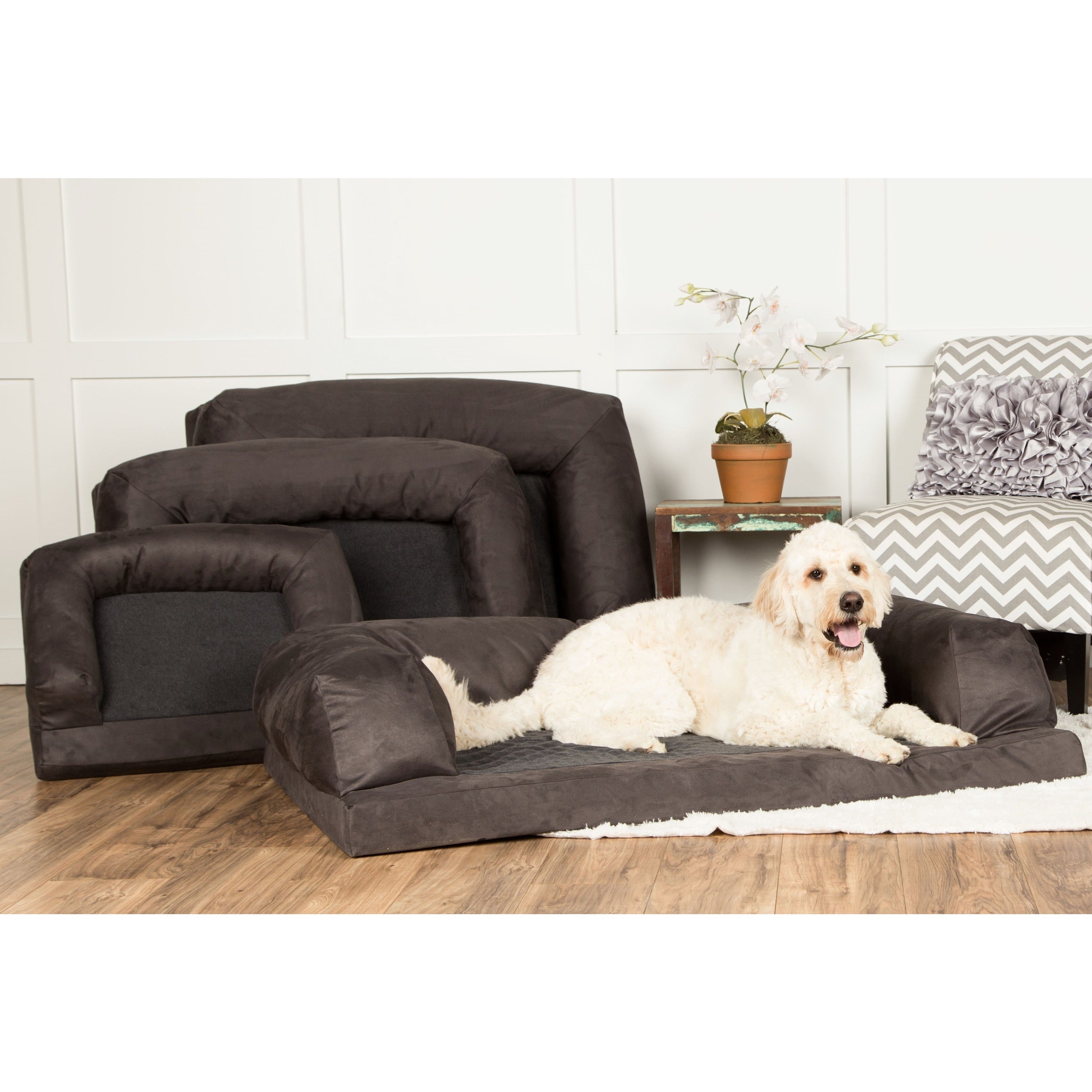 Shop Hidden Valley Baxter Orthopedic Dog Bed And Couch (Small To Extra Extra  Large)   Free Shipping On Orders Over $45   Overstock.com   6217879