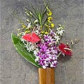 Dendrobium/Oncidium/Anthurium Assortment  (12 pcs)