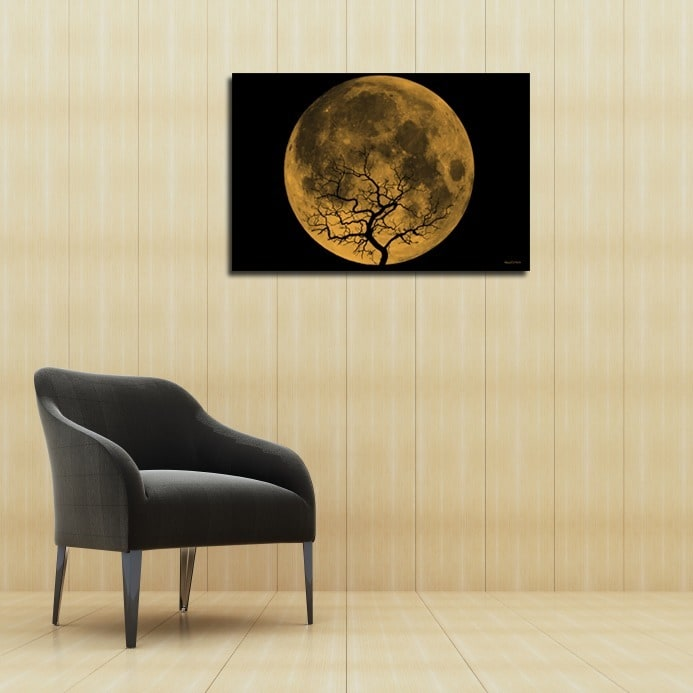 Maxwell Dickson Orange Moon Canvas Wall Art - Free Shipping Today ...