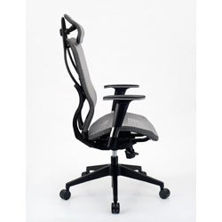 Integrity Seating Ergonomic Mesh High Back Executive Office Chair On Free Shipping Today 6364190