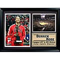Chicago Bulls Derrick Rose Photo Stat Frame