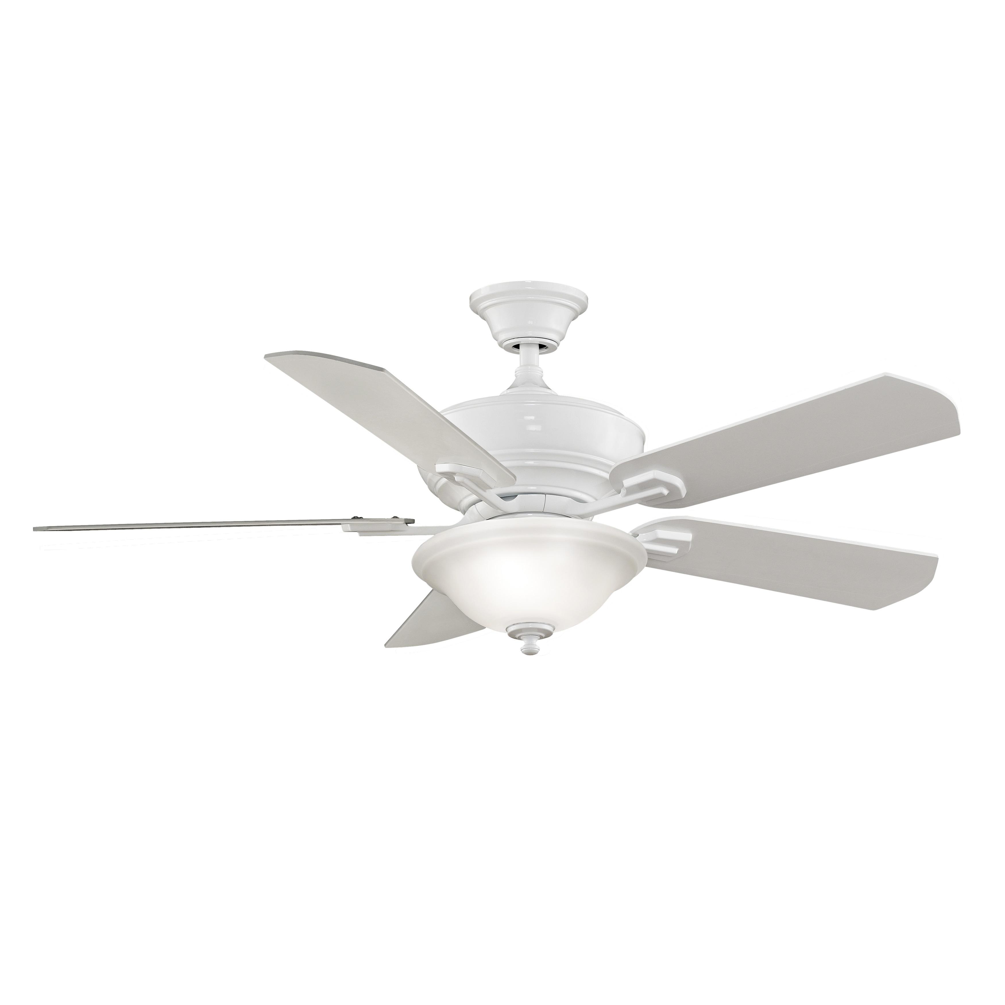 Fanimation Camhaven 52 inch 2 light Ceiling Fan Free Shipping