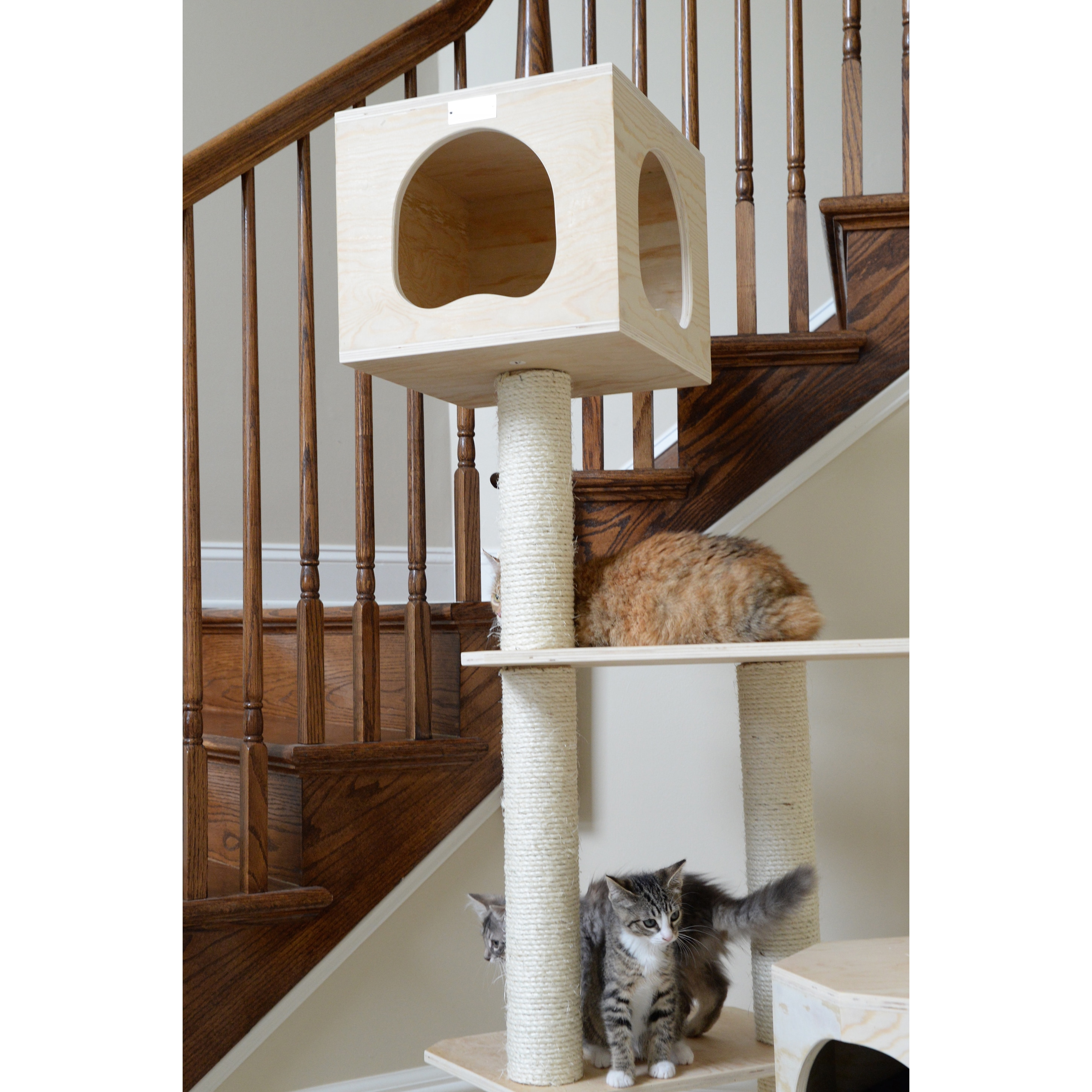 forest products furniture tree cat pet club go