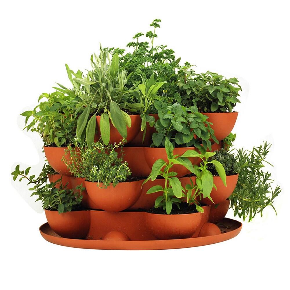 Ordinaire Shop Handy Pantry Stack U0026 Grow Stackable Terracotta Garden Planter   Free  Shipping Today   Overstock.com   8874428