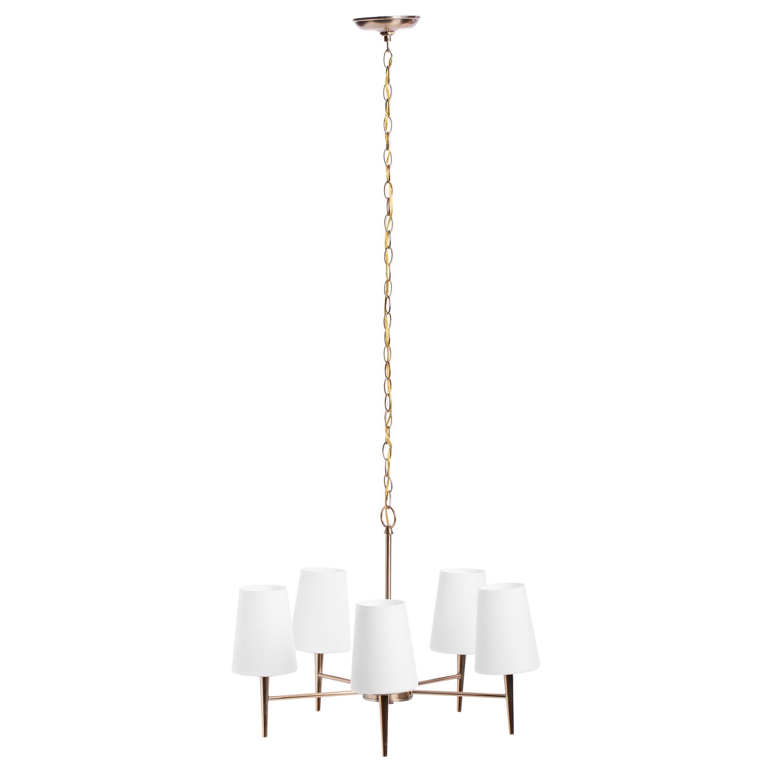 Driscoll 5 light single tier chandelier free shipping today driscoll 5 light single tier chandelier free shipping today overstock 16147372 mozeypictures Image collections