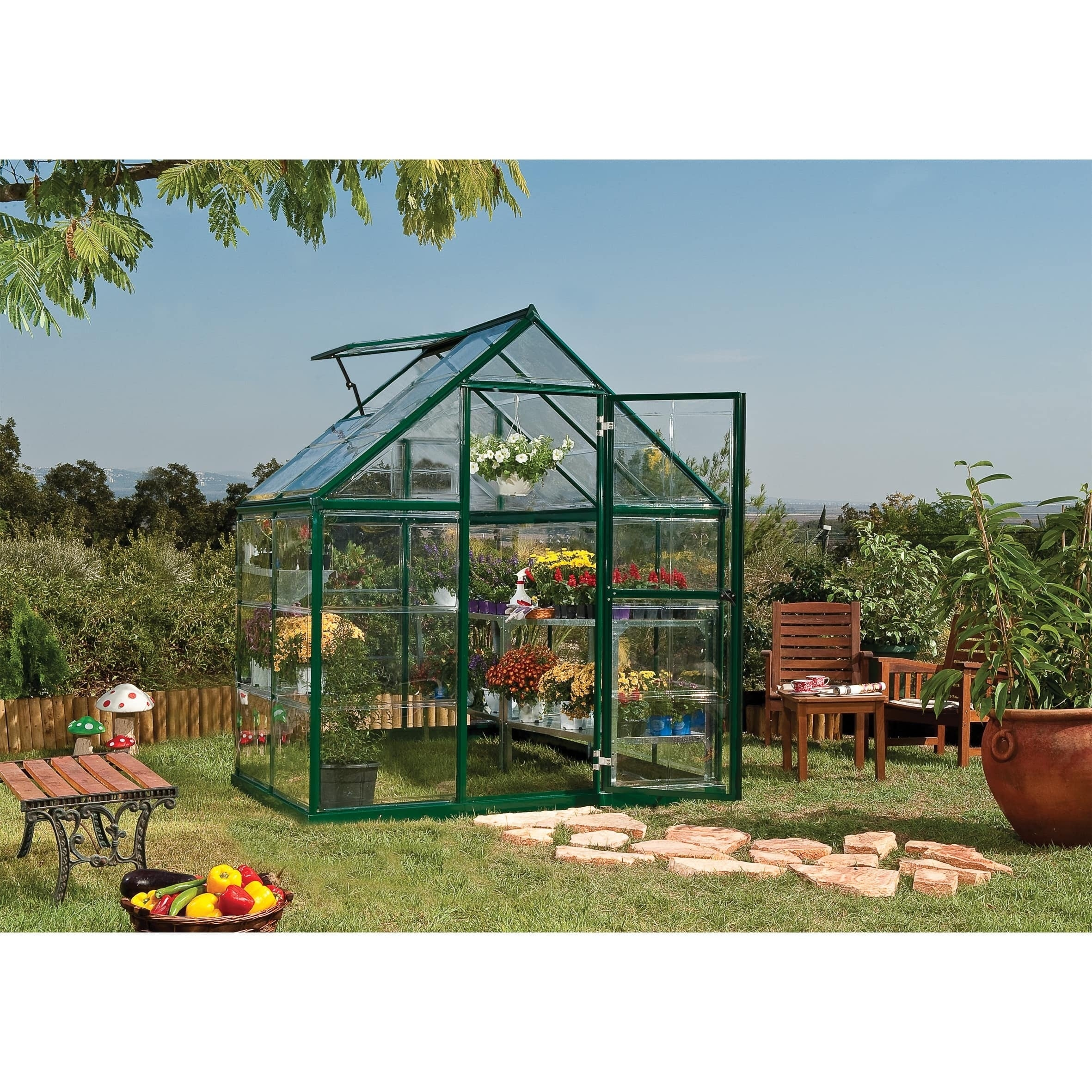 Shop Palram Harmony 6ft. x 4ft. Greenhouse - Free Shipping Today ...