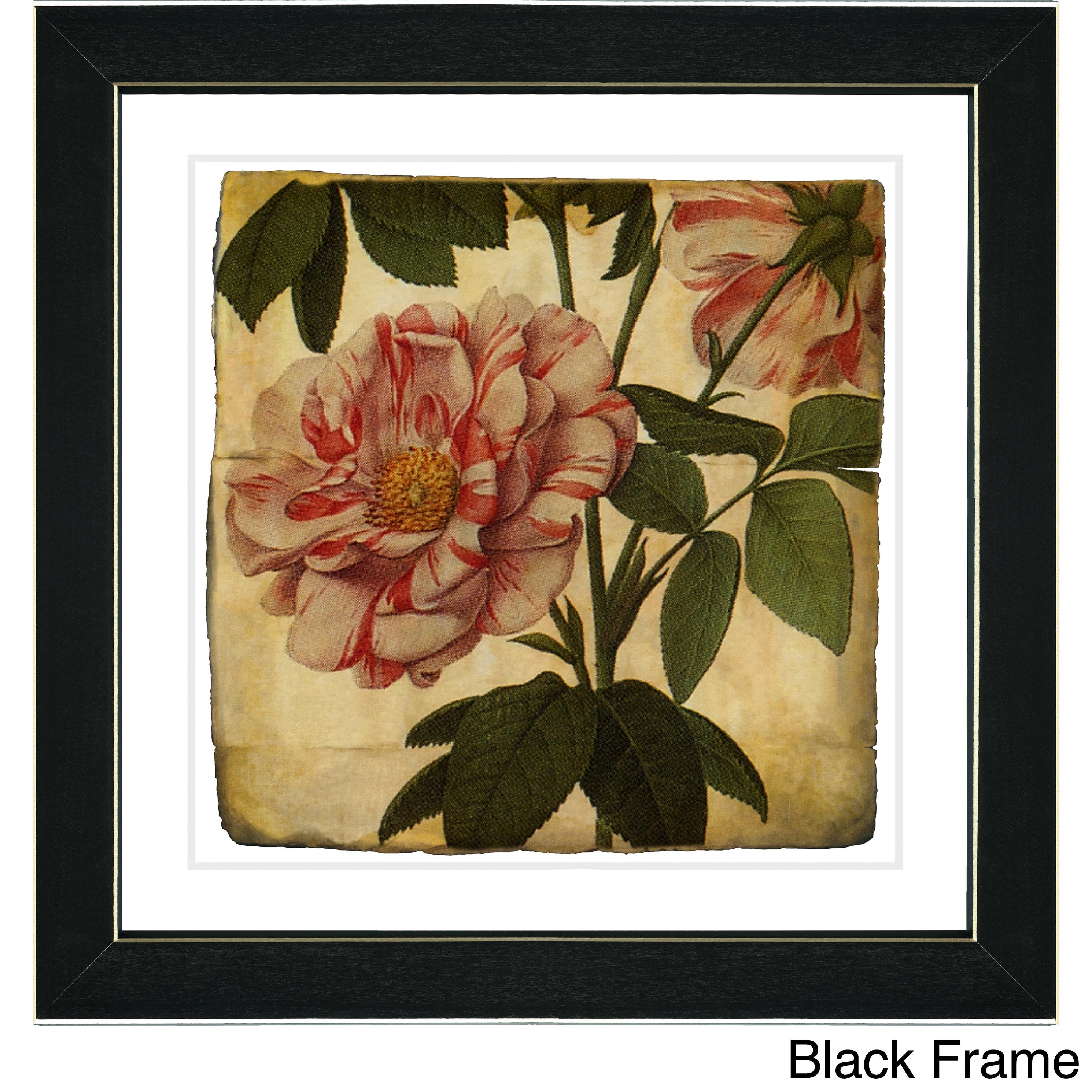 Shop Studio Works Modern \'Vintage Botanical No 49 - Antiqued\' Framed ...