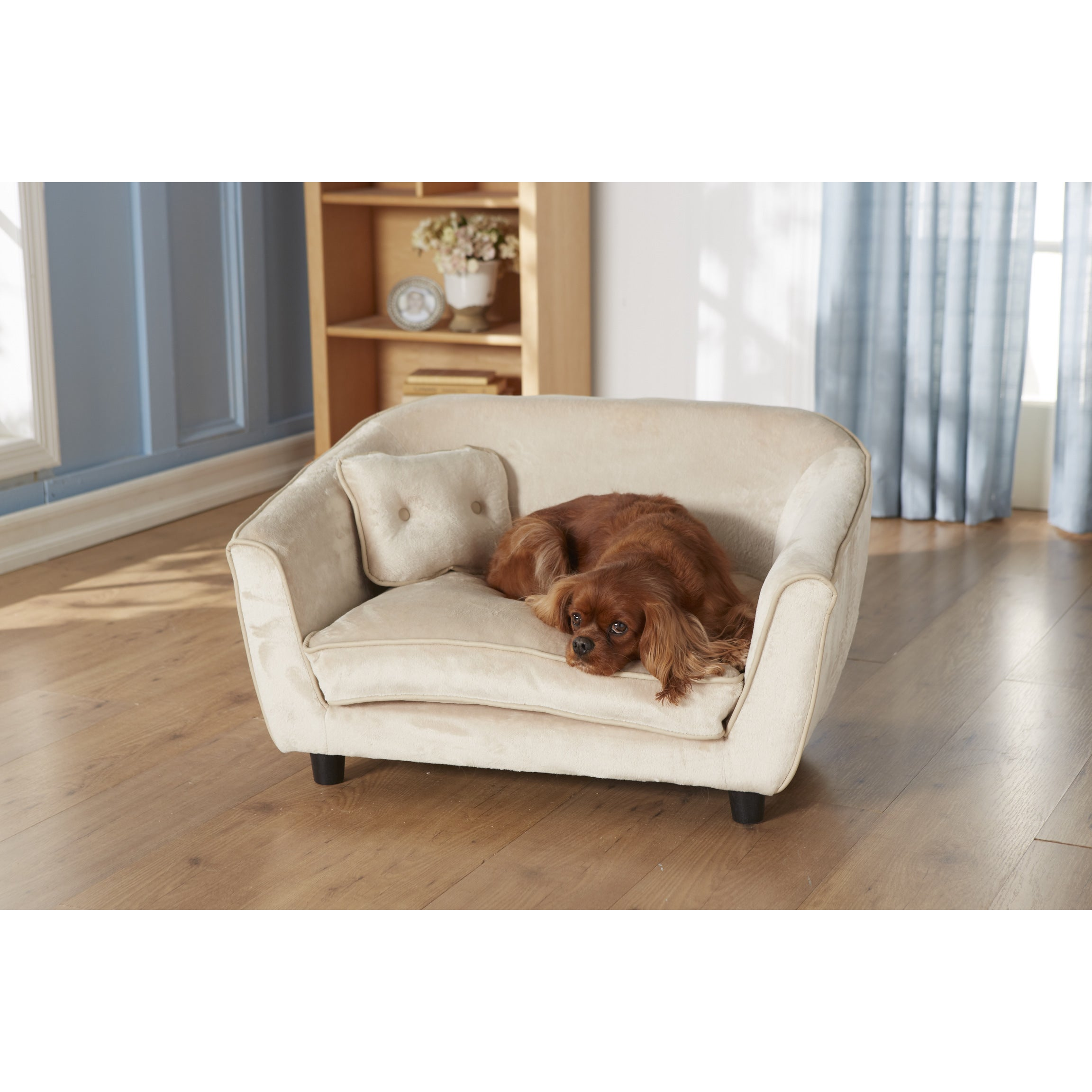 PetFusion Premium Edition Ultimate Memory Foam Dog Lounge and Dog Bed -  Free Shipping Today - Overstock.com - 17240122