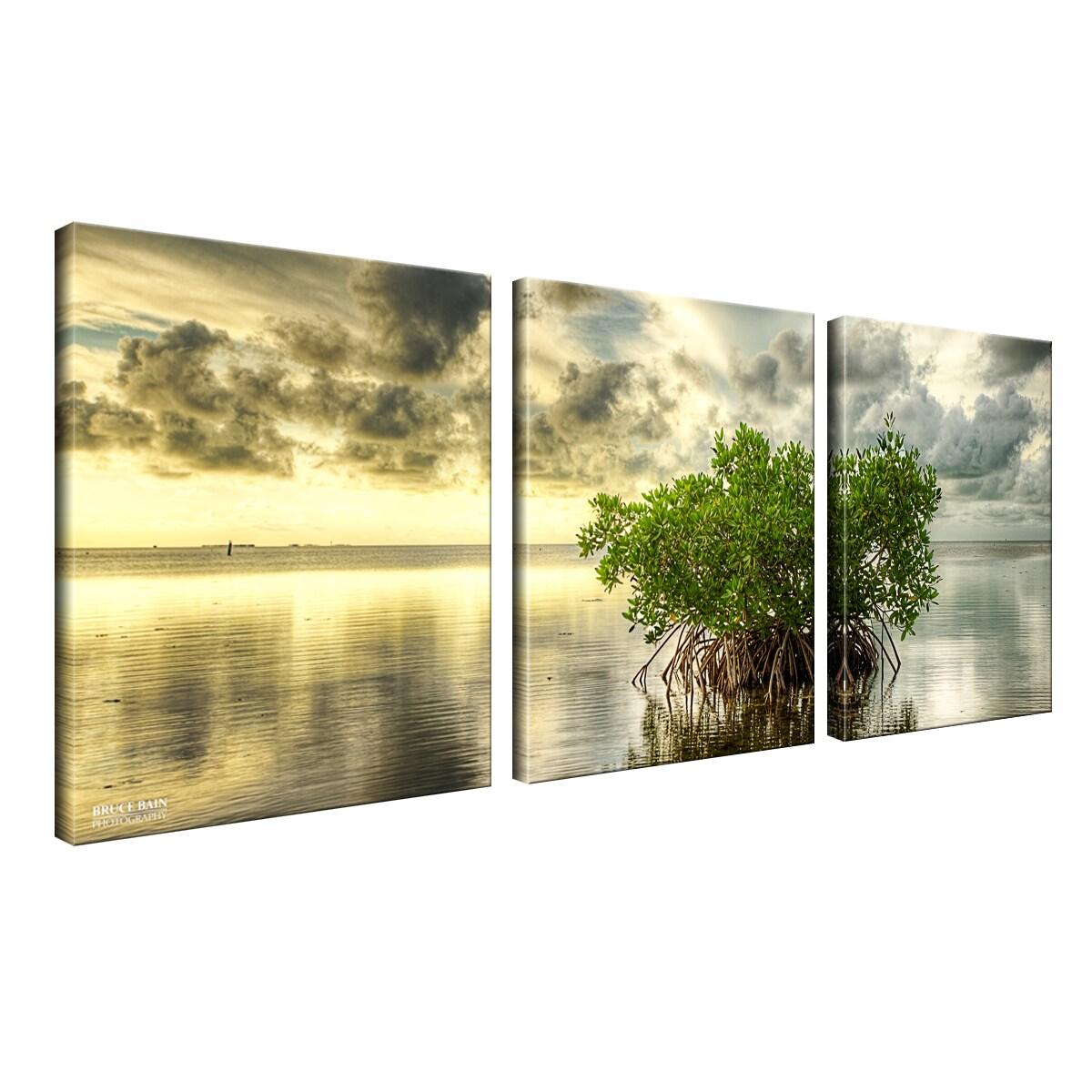 Shop Bruce Bain \'Mangrove\' 3-piece Canvas Wall Art - On Sale - Free ...