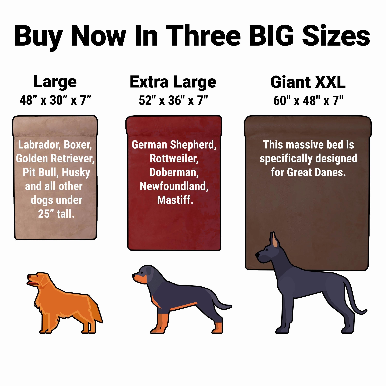 Picture of: Big Barker 7 Orthopedic Dog Bed Headrest Edition Overstock 9129966