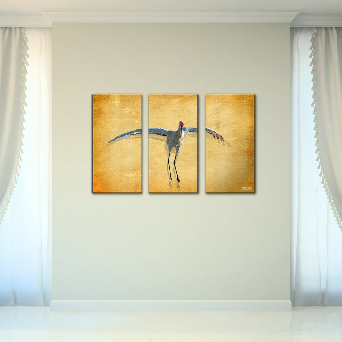 Shop Bruce Bain \'Dancing Bird\' 3-piece Set Canvas Wall Art - Free ...