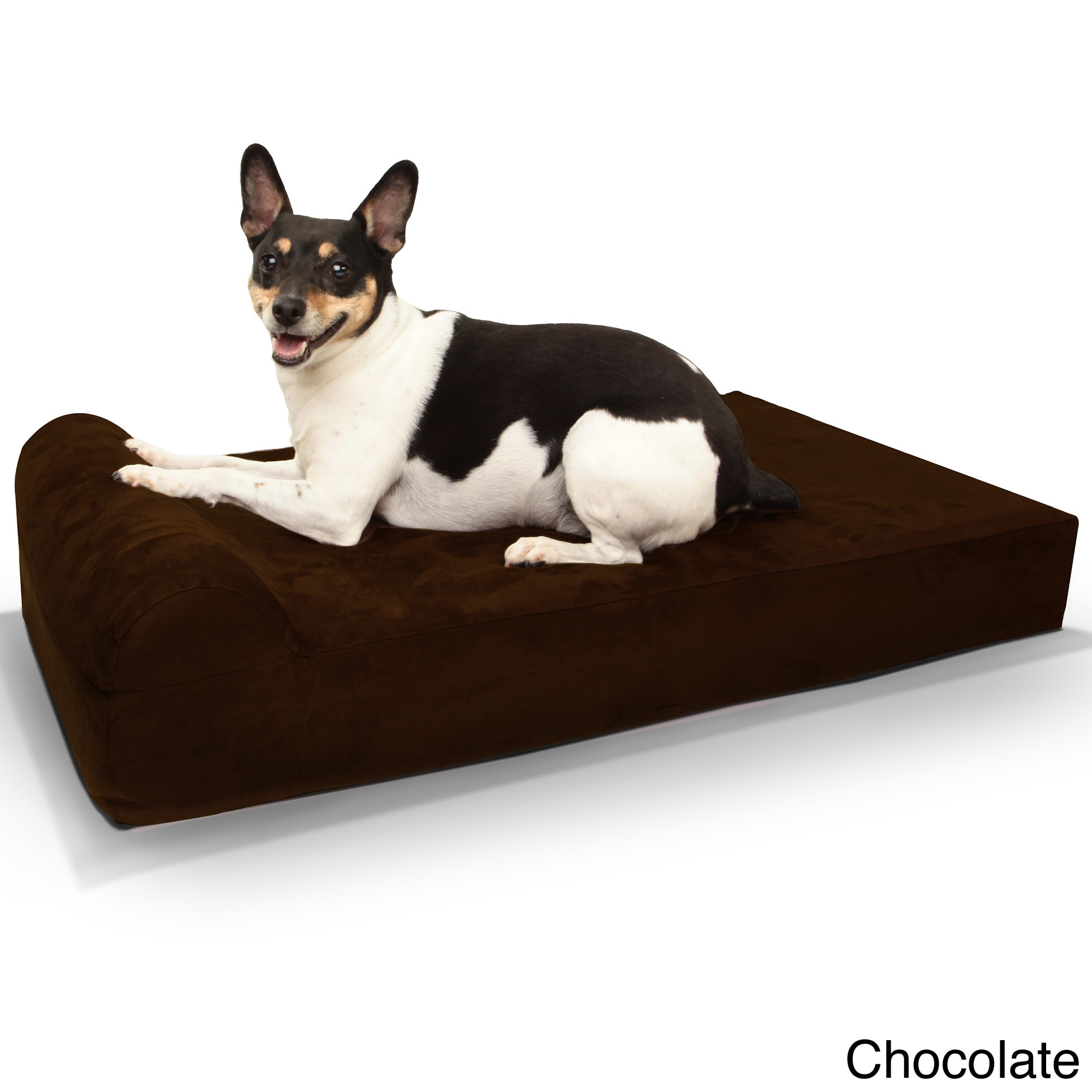 dogs of world new cat sale and dog orthopedic beds bed awesome