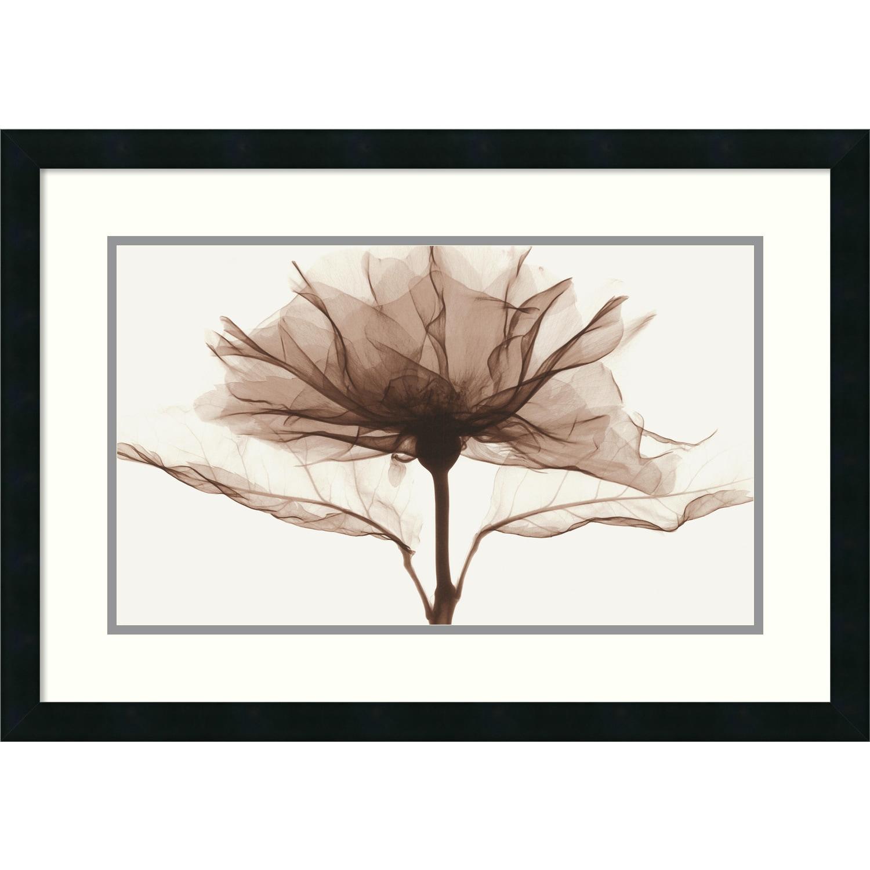 Shop Framed Art Print \'A Rose\' by Steven N. Meyers 27 x 19-inch ...