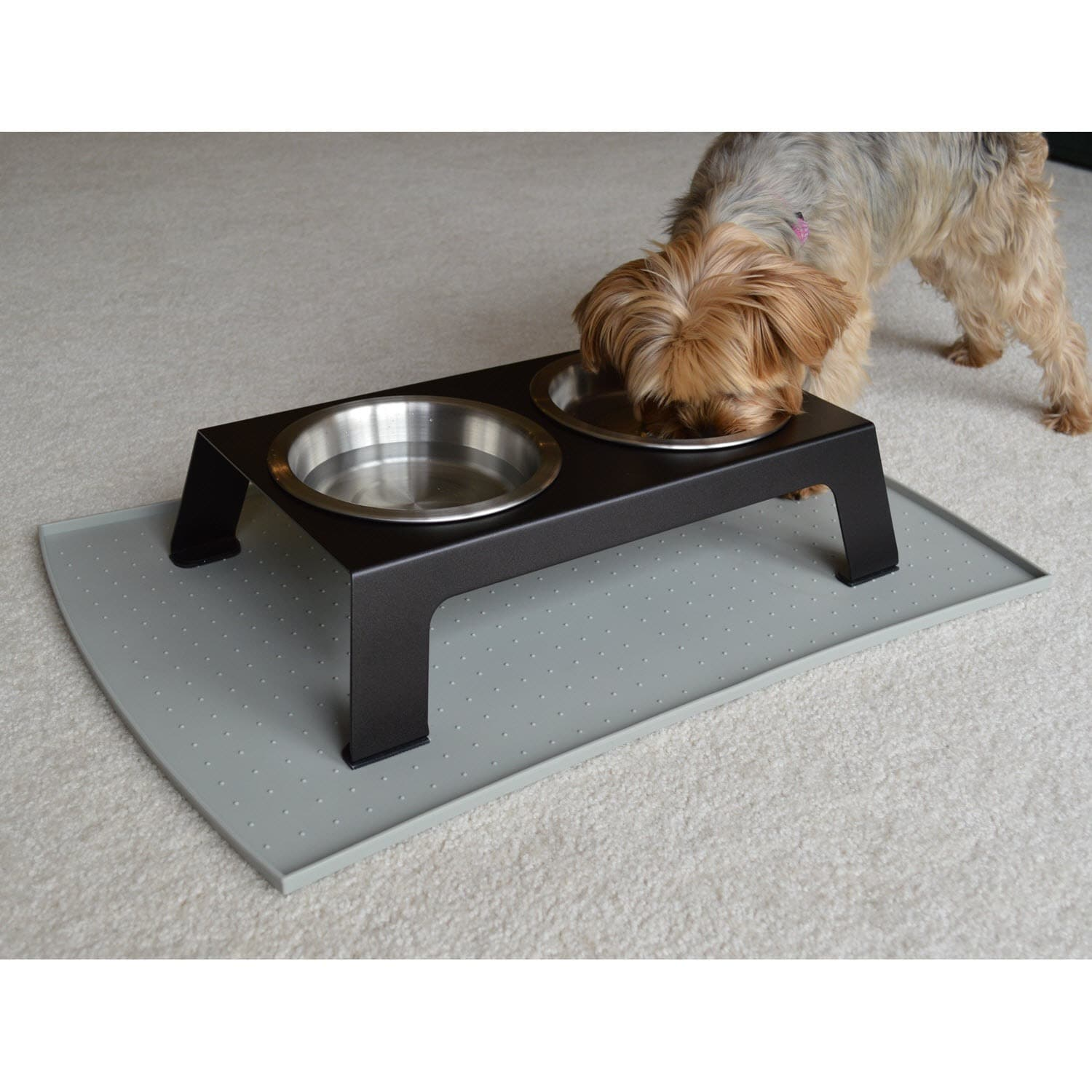 more the with reviews glass read by cat of pin bowls feeder elevated product