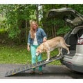 Pet Gear Reflective Tri-fold Pet Ramp