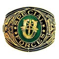 Official US Special Forces Antiqued Goldtone Ring