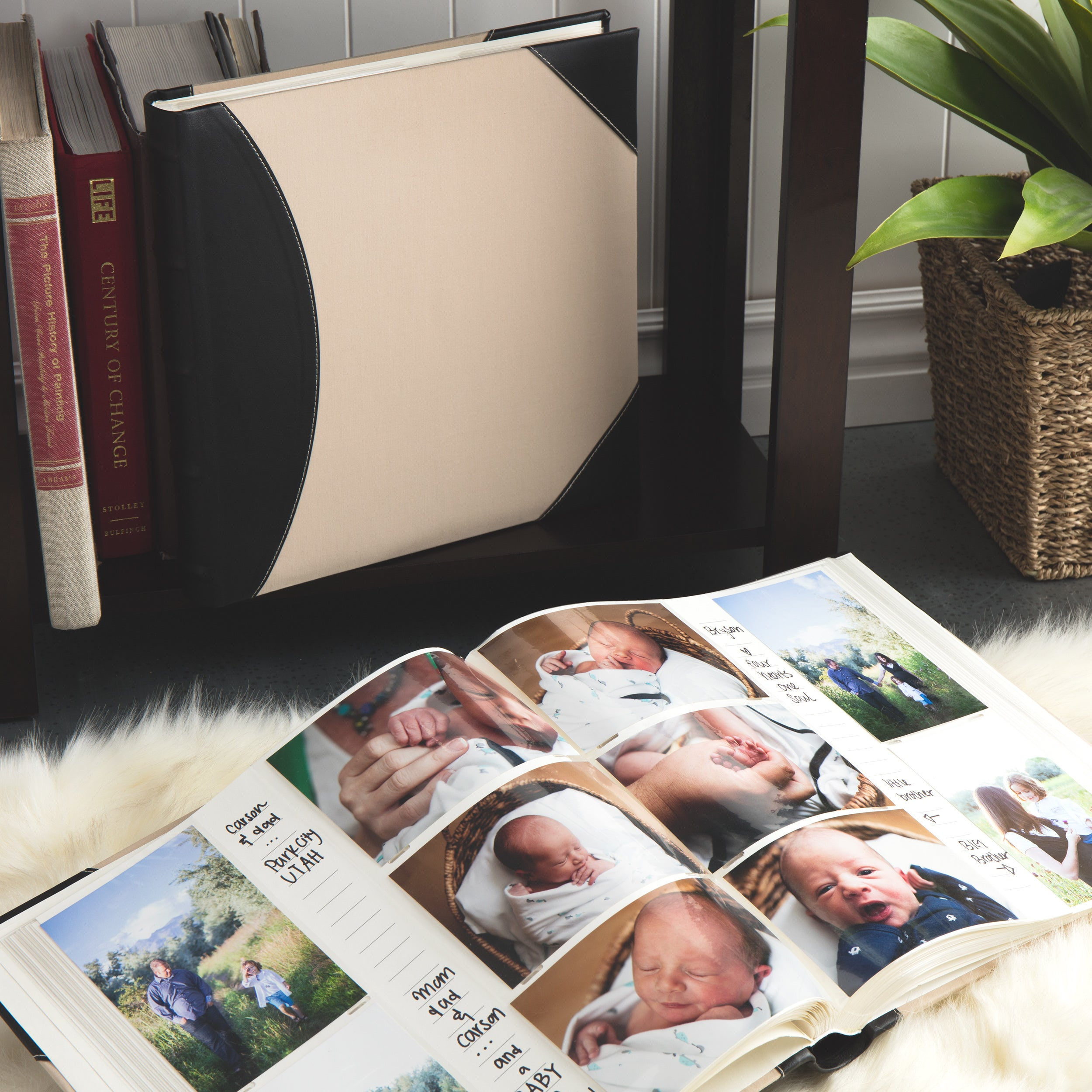 Shop Pioneer Photo Albums High Capacity Pocket Fabric And