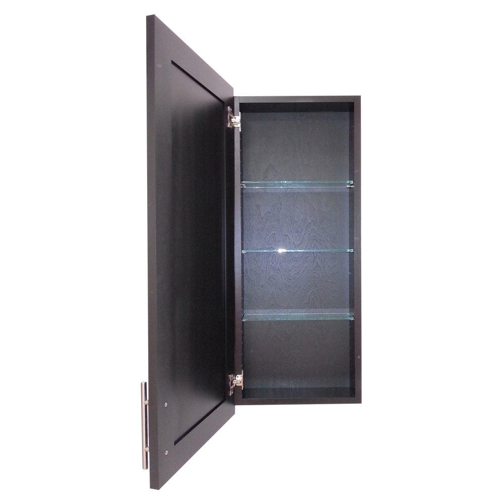 Wall Mounted Shallow Depth Clic Frameless Cabinet On Free Shipping Today 9613691