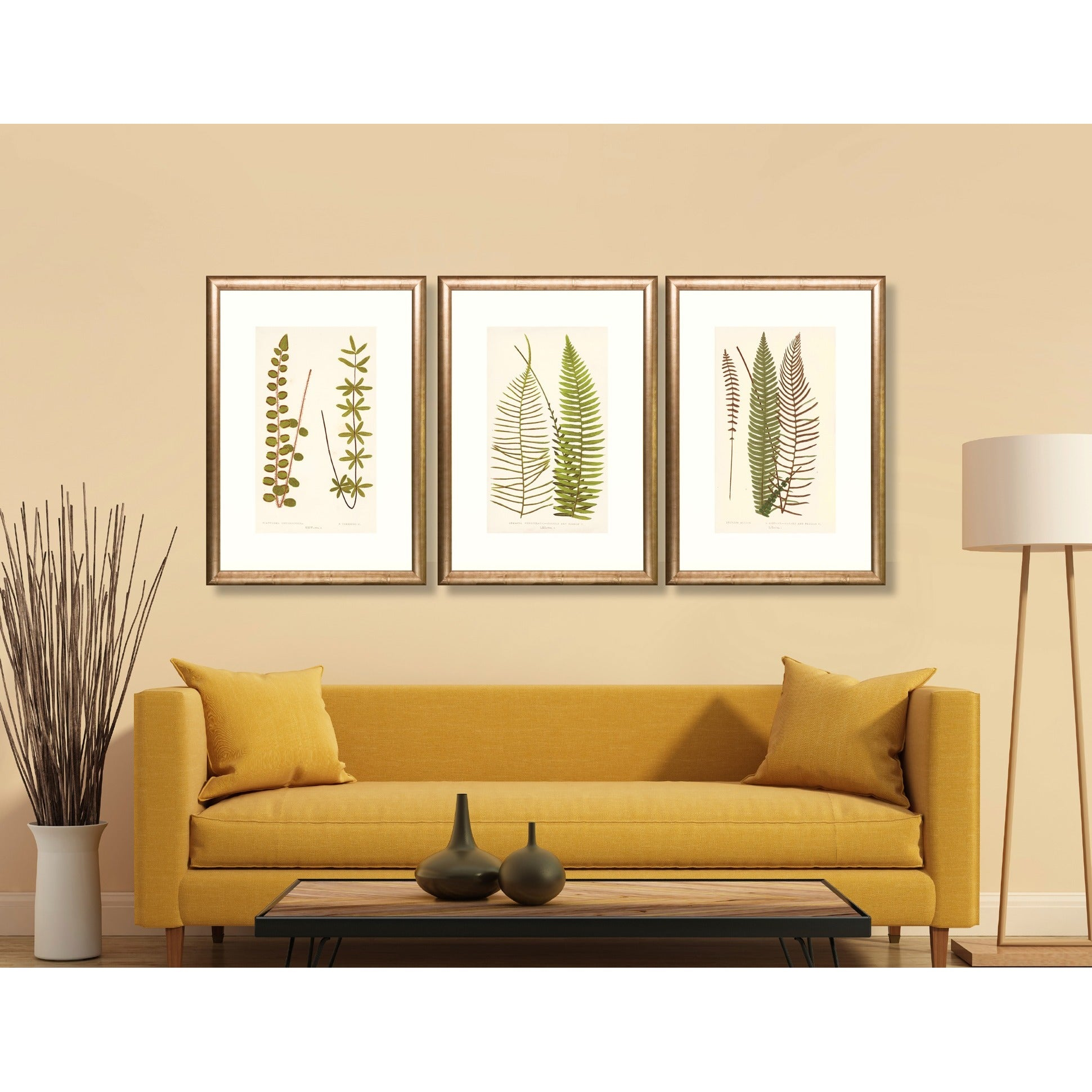 Transitional Two Ferns Framed Art Print - Free Shipping Today ...