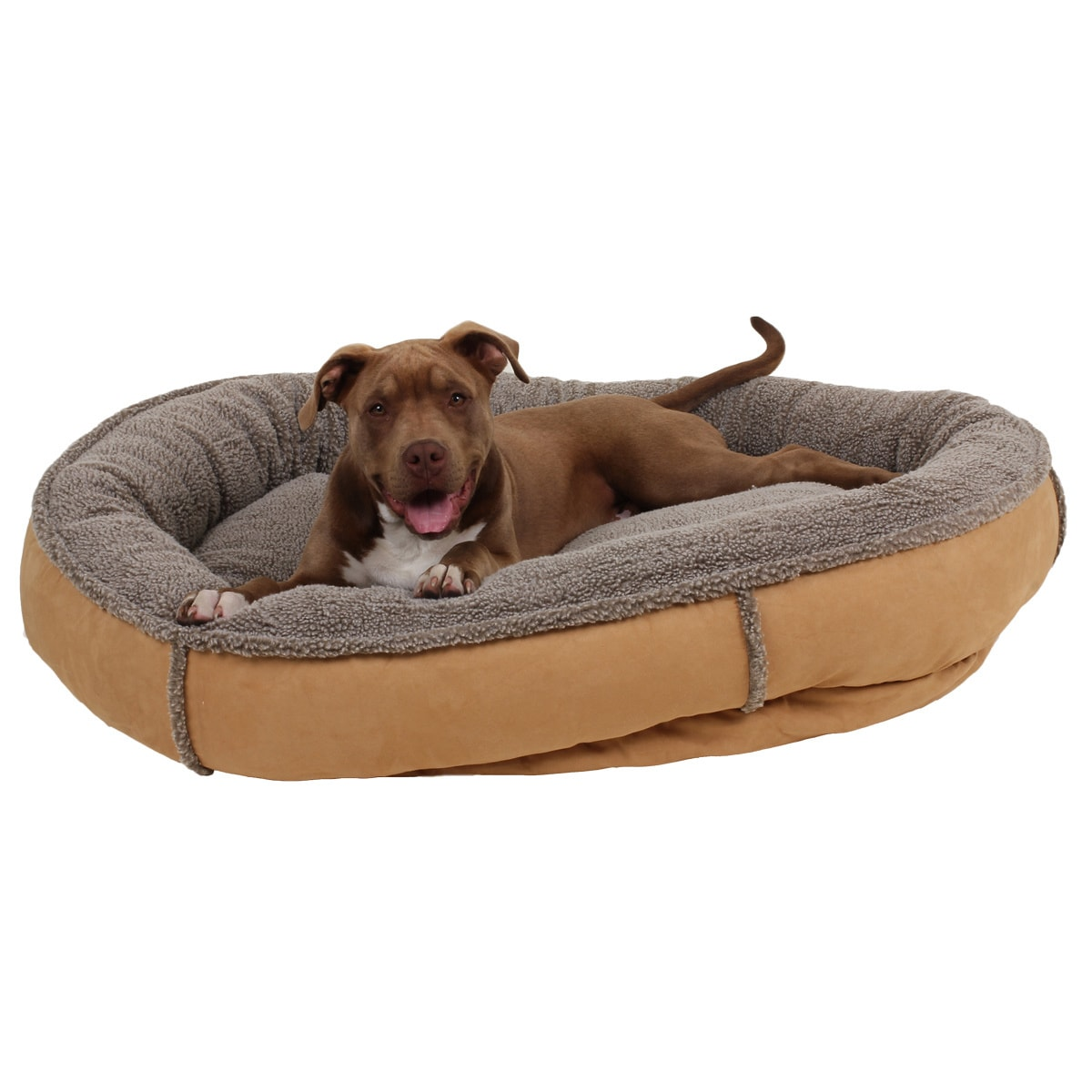 Shop Carolina Pet Co. Comfy Cup Faux Suede Round Bolster Dog Bed ...