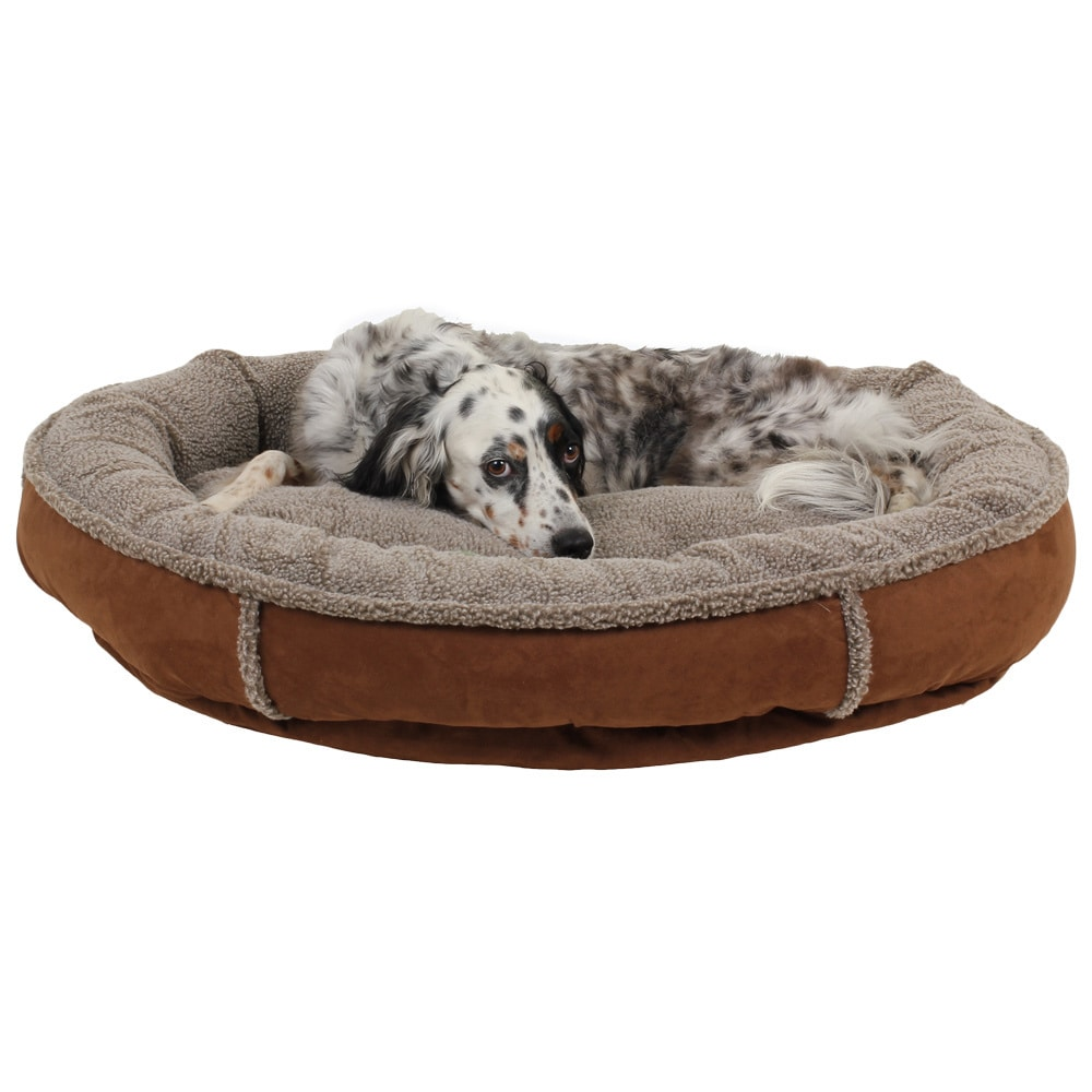 Shop Carolina Pet Co Comfy Cup Faux Suede Round Bolster Dog Bed Baby Memory Foam Free Shipping Today 9787891