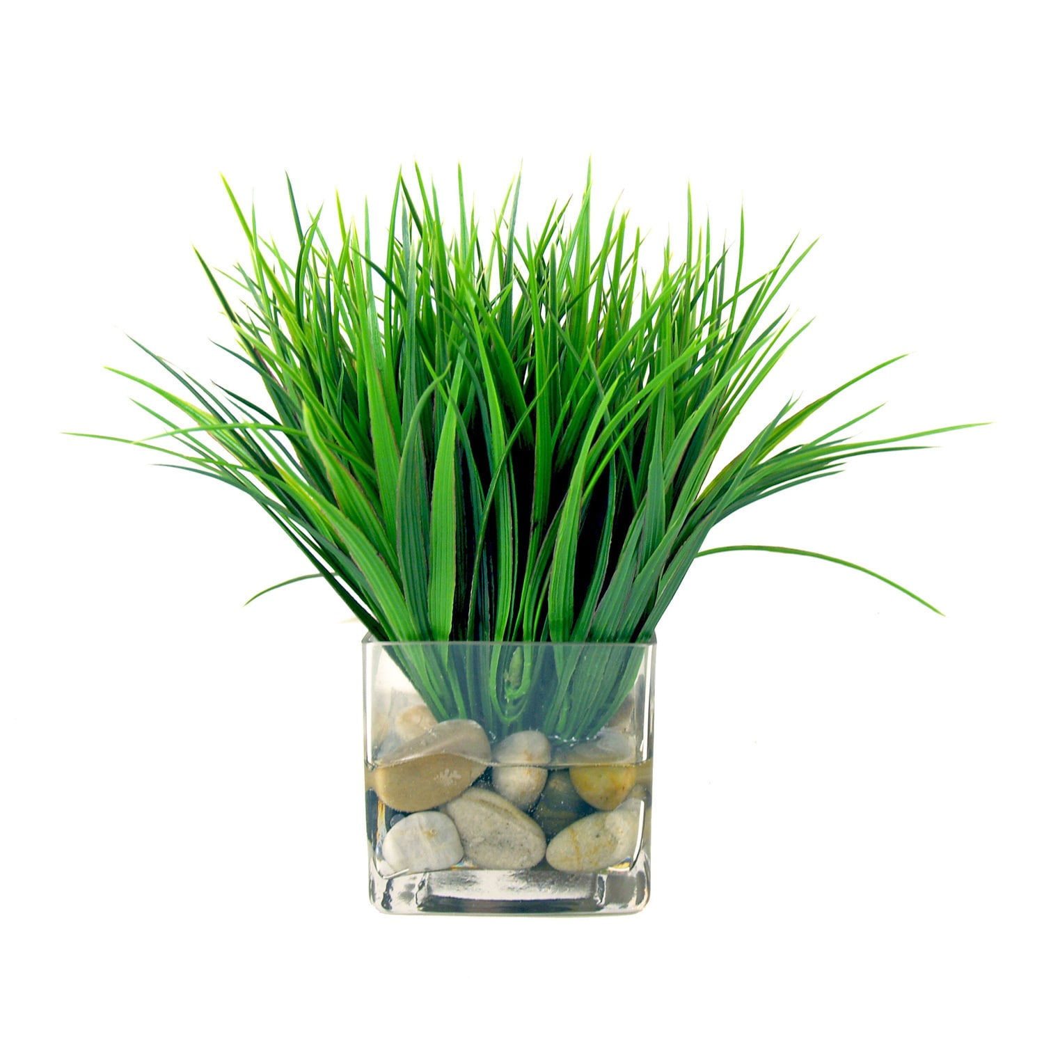 Creative Displays Vanilla Grass Silk Flowers In Acrylic Water Filled Glass Cube Vase Clear