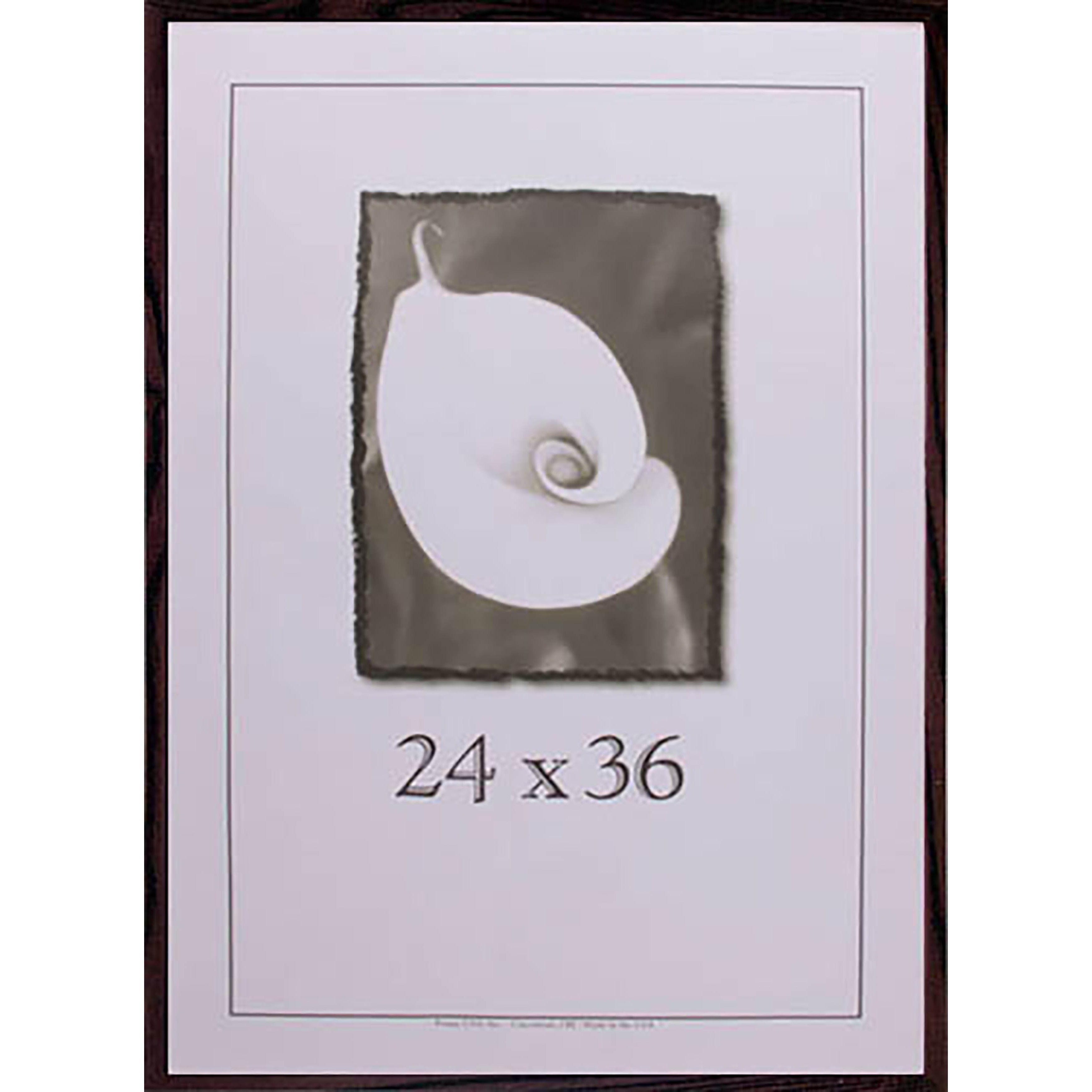 Shop Classic Picture Frame (24-inches x 36-inches) - 24 x 36 - Free ...