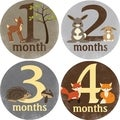 Rocket Bug Forest Critters Monthly Baby Bodysuit Stickers
