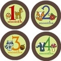 Rocket Bug Woodland Creatures Monthly Baby Bodysuit Stickers (Set of 13)