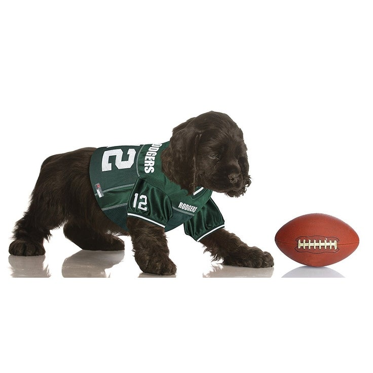 best sneakers 7f493 db841 aaron rodgers dog jersey
