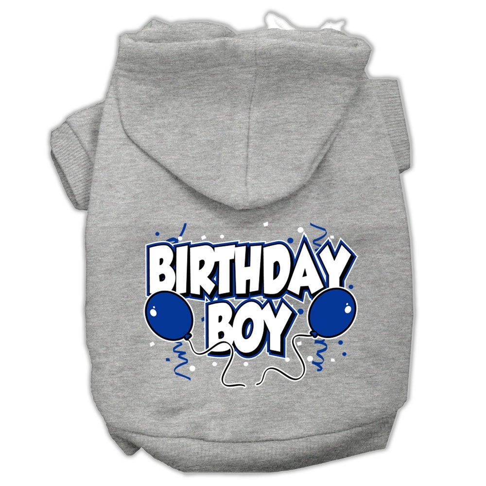 Shop Birthday Boy Screen Print Pet Hoodies Grey Size XS 8