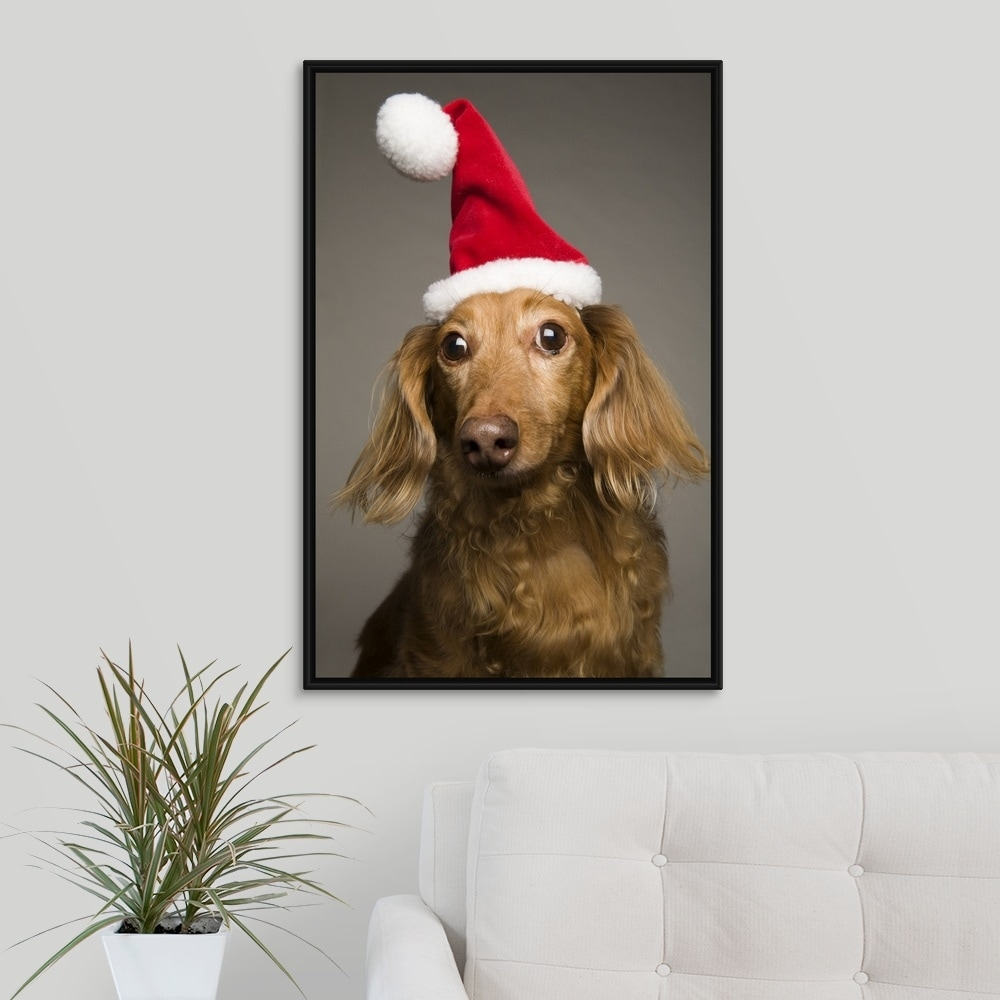 3f48da5f9e8ac Shop Floating Frame Premium Canvas with Black Frame entitled Dachshund  wearing a Christmas Santa Hat - Multi-color - Free Shipping Today -  Overstock - ...
