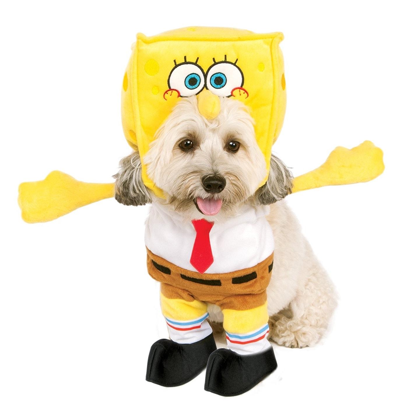 Shop Nickelodeon Spongebob Squarepants Pet Costume - Free Shipping ...