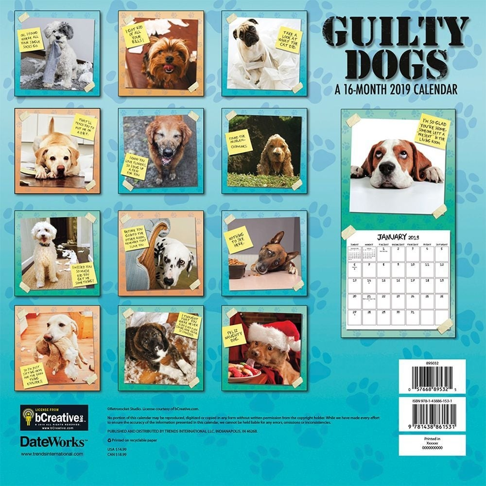 2019 Guilty Dog Wall Calendar, More Dogs by Trends International