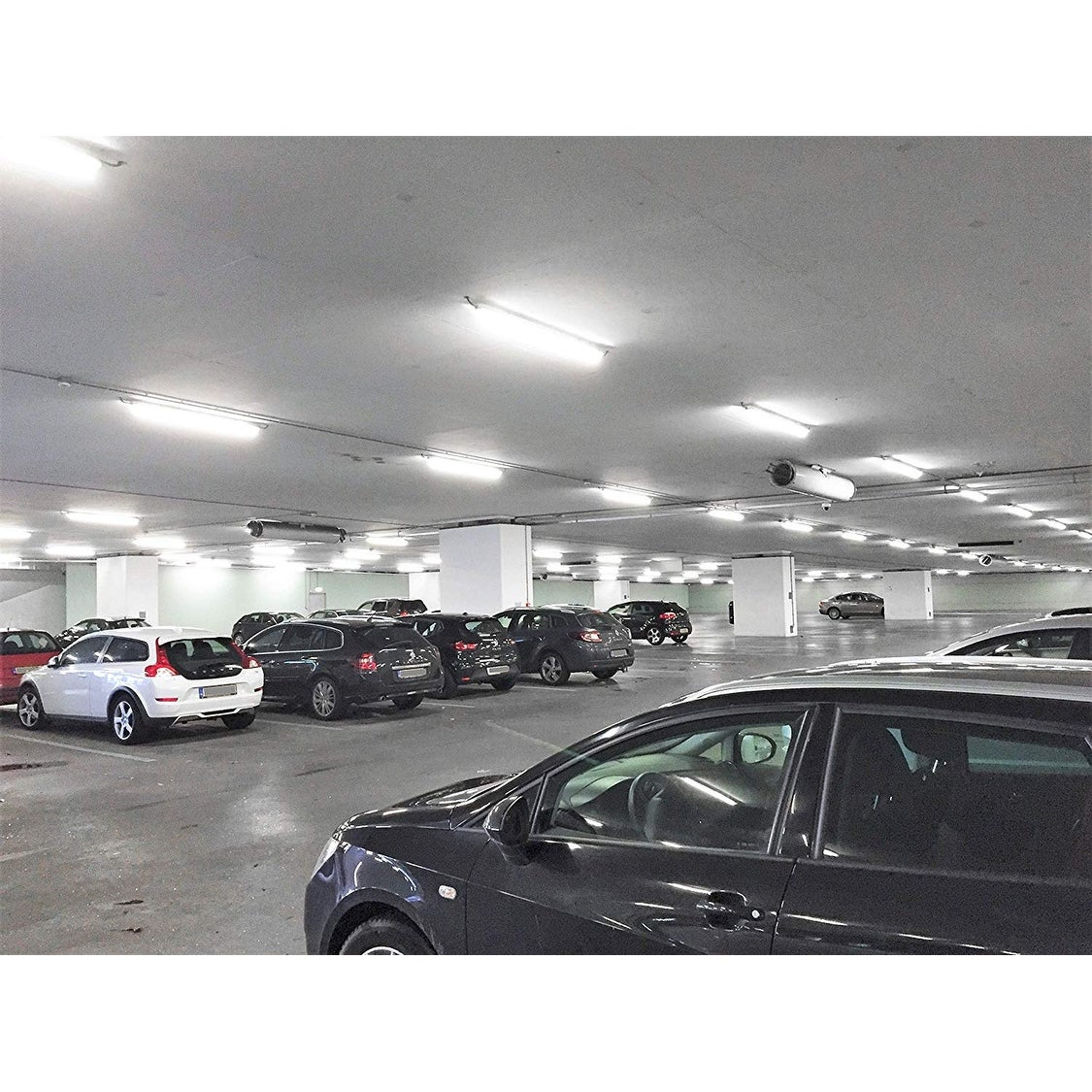 Shop Leonlite 4ft Led Shop Light 5250lm Ul Dlc Listed 5000k
