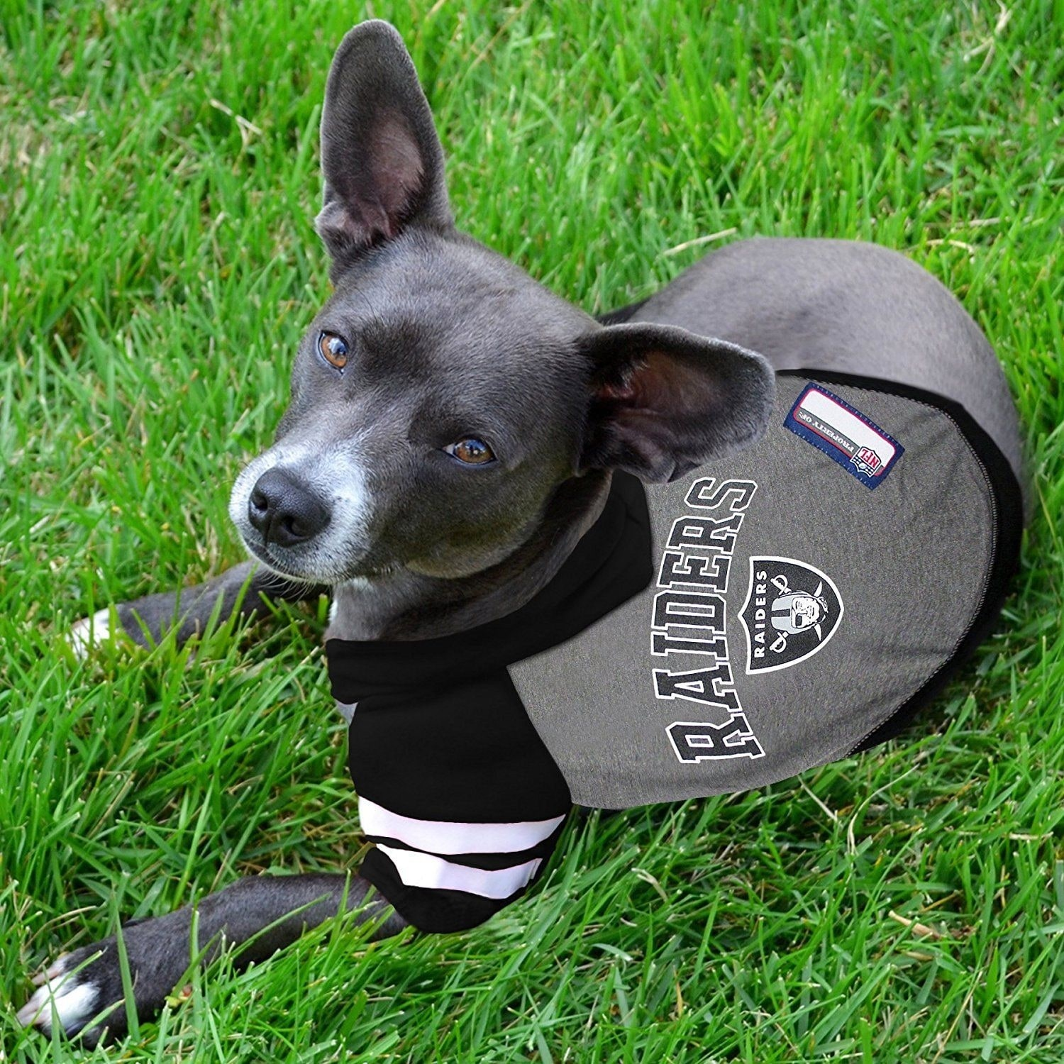 Shop Pets First NFL Hoodie Tee Shirt for Dogs   Cats - COOL T-Shirt - On  Sale - Free Shipping On Orders Over  45 - Overstock - 23046256 a54191860