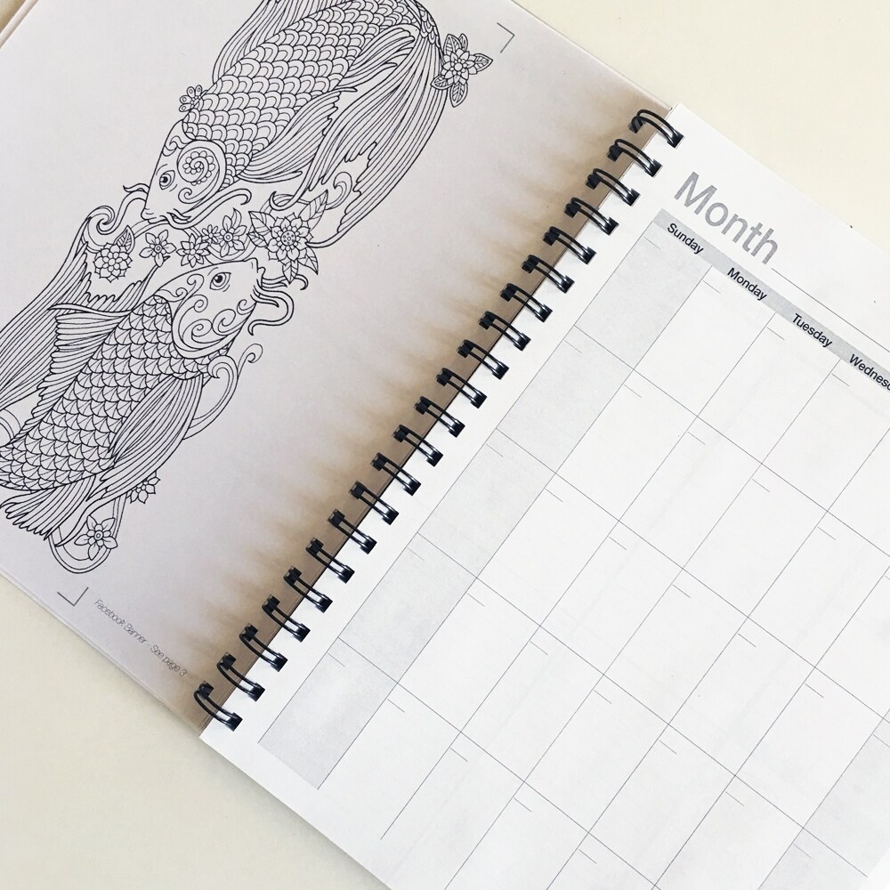 Action Publishing Undated Coloring Day Planner - Free Shipping On ...