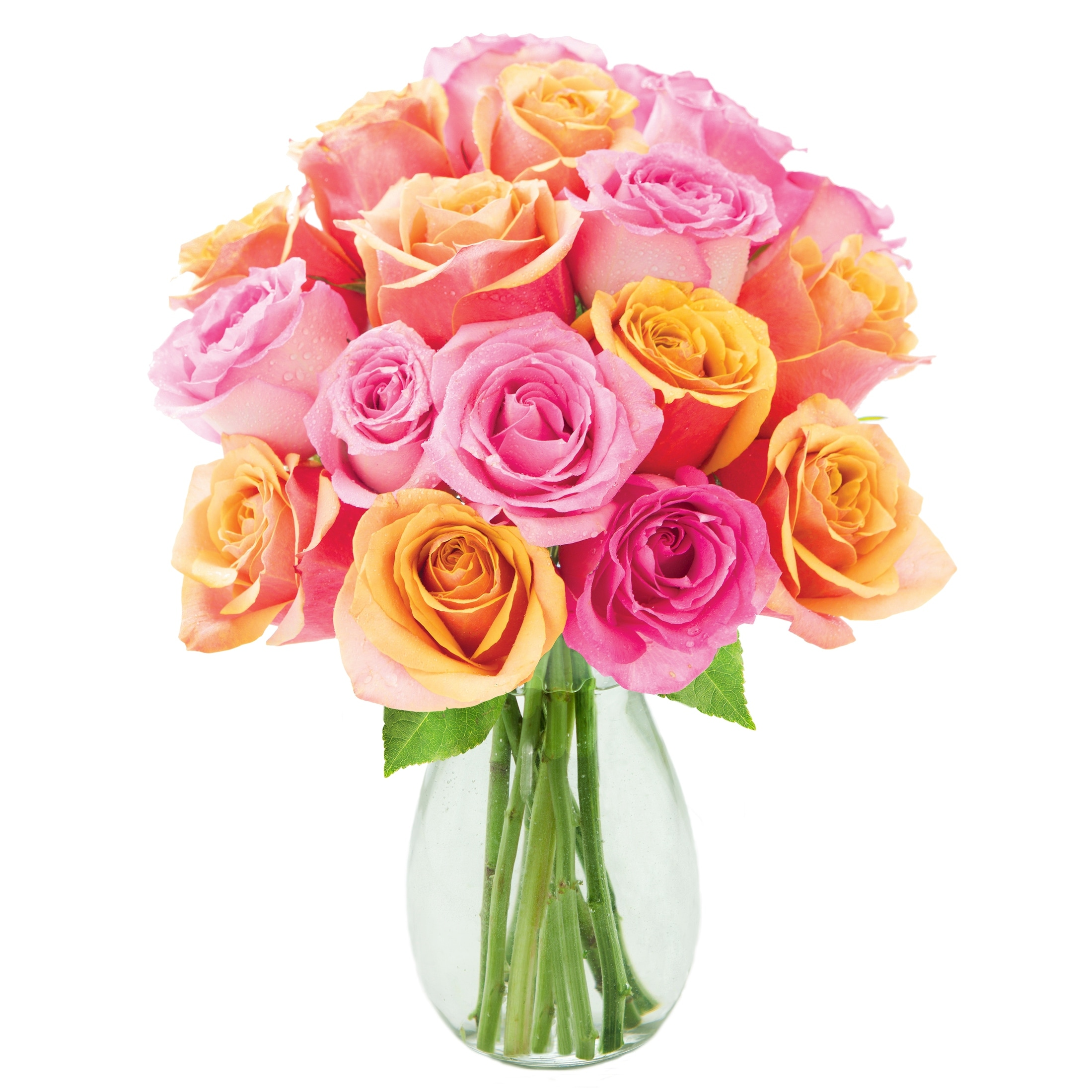 Shop Kabloom Bouquet Of 18 Orange And Pink Roses Farm Fresh Long