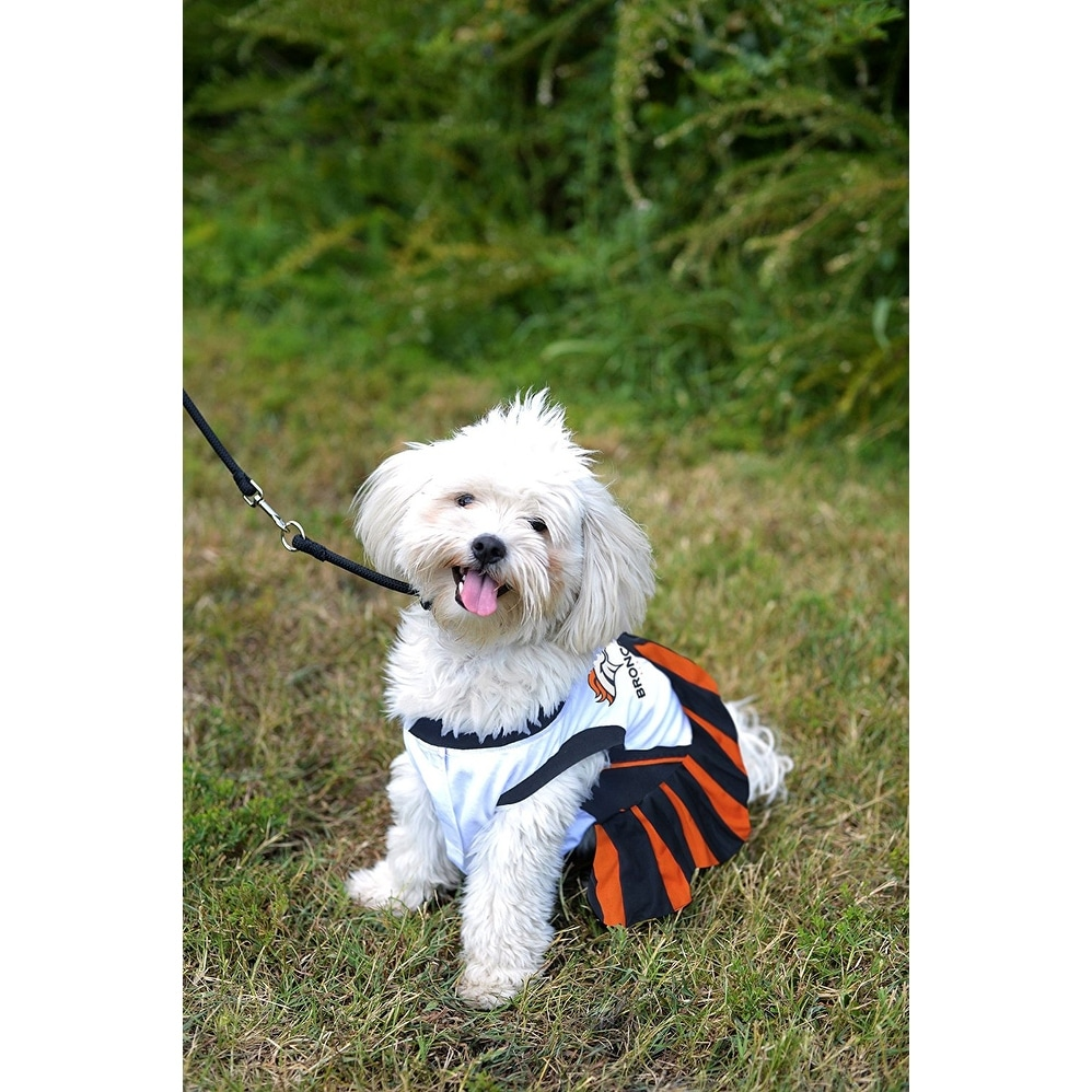 Shop NFL Denver Broncos Cheerleader Dress For Dogs And Cats - On Sale -  Free Shipping On Orders Over  45 - Overstock - 19991376 a3ebcc26f