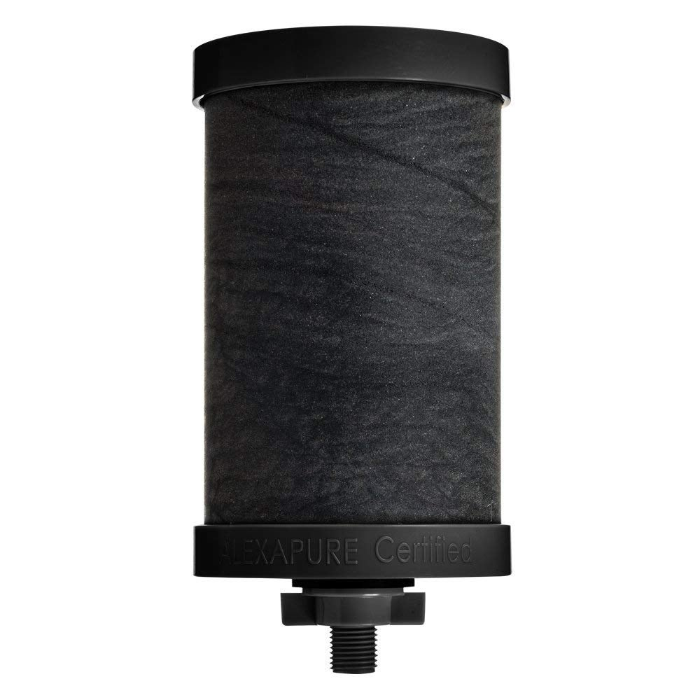 Shop Alexapure Pro Filter Replacement 1 Filter Pack Black - Free ...