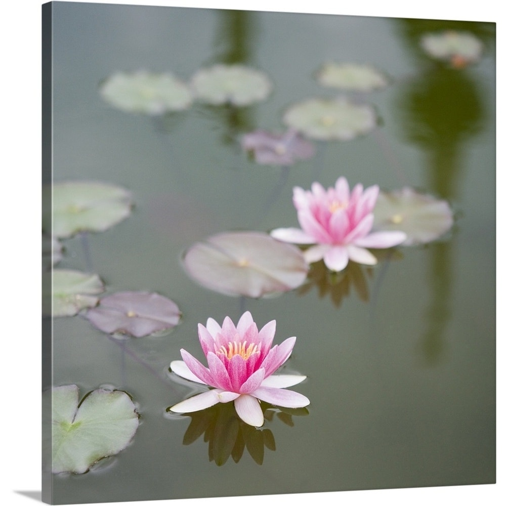 Shop premium thick wrap canvas entitled water lily isola bella shop premium thick wrap canvas entitled water lily isola bella island multi color on sale free shipping on orders over 45 overstock 21007042 izmirmasajfo